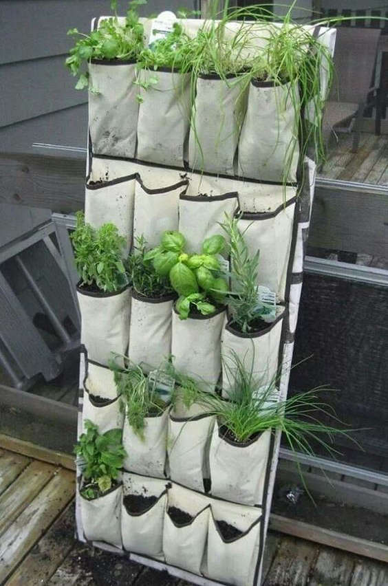 étagère à chaussures transformer en jardin pour fines herbes