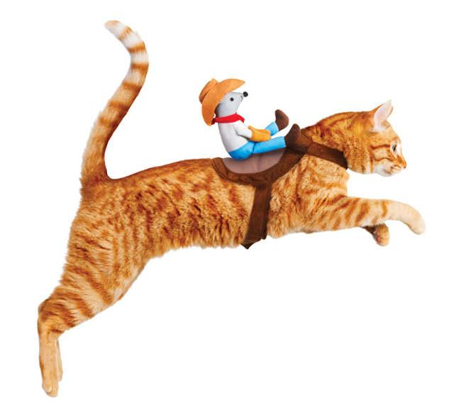 chat déguisé en cheval avec une souris comme cavalier, comme un cowboy