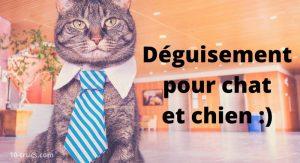Déguisement pour chien et chat