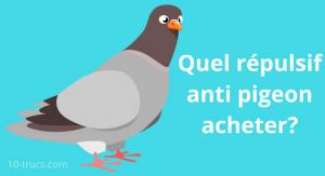 Achat d'un répulsif pigeon