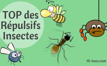 répulsif insectes