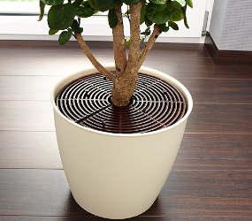 grille de protection pour plante