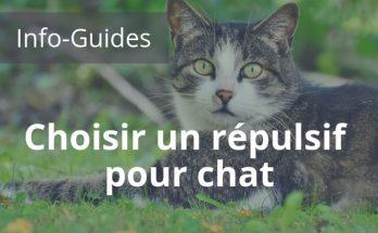 choisir un répulsif pour chat, le guide pour faire le meilleur choix de répulsif