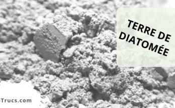 Comment utiliser la terre de diatomée