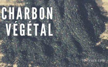 Bienfaits du charbon végétal
