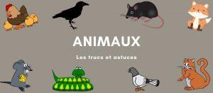 Trucs et astuces sur les animaux, animaux sauvages et animaux domestiques