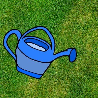 Arroser l'urine de chien sur la pelouse