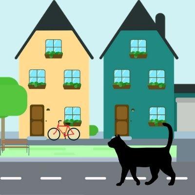 Chercher un chat perdu autours de la maison