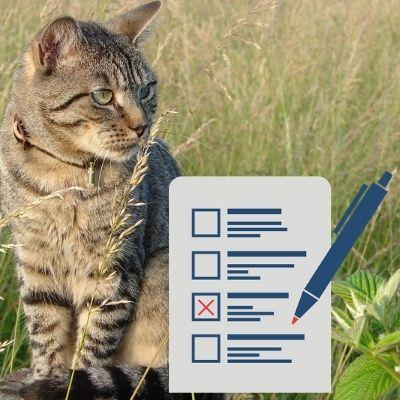 Enregistrement de son chat