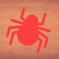 Traitement naturel contre les araignées rouges
