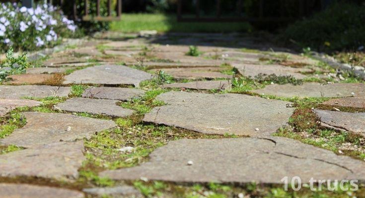 nettoyer les dalles de jardin